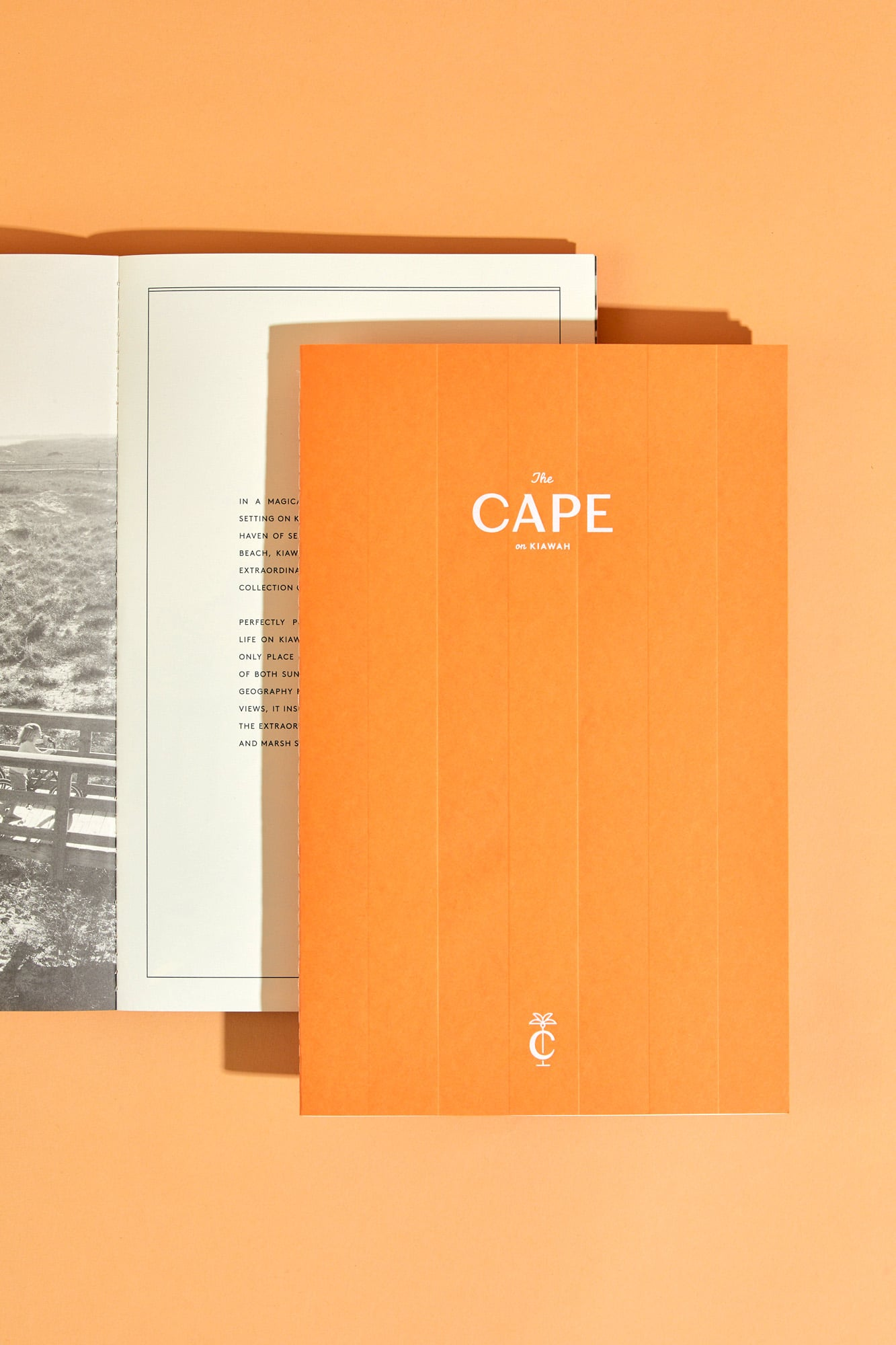 The Cape | SDCO Partners